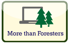 Forest Service Careers Jobs Internships