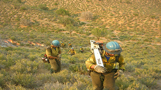 The Tallac Hotshots hike in to battle a wildfire.