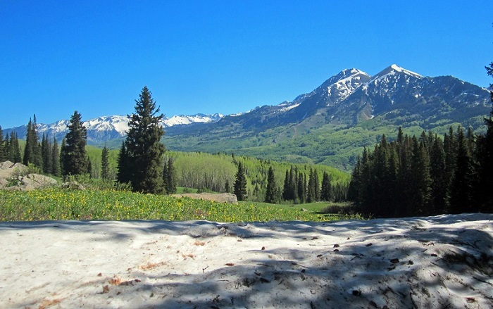 grand mesa uncompahgre and gunnison national forests west elk