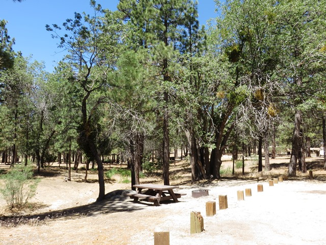 Crab Flat Campground is a great spot for OHV enthusiasts as it's located near several riding trails.