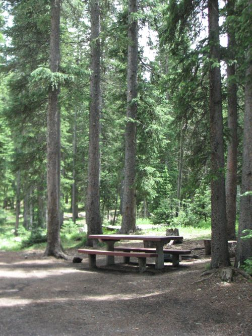 Photo of typical campsite