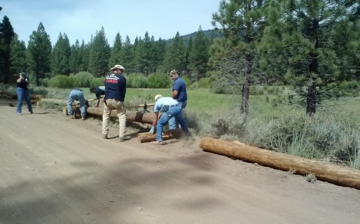 Picture of volunteers working in Dog Valley