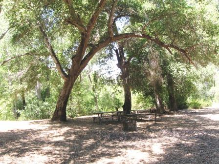 [image] Middle Santa Ynez Campground