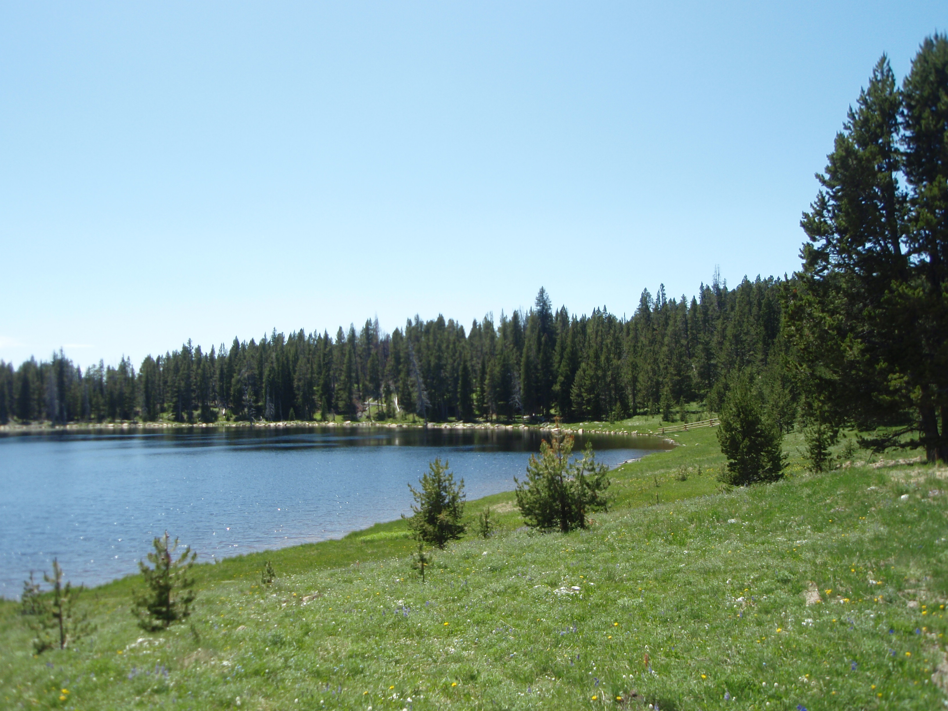 view from lower paintrock lake campground