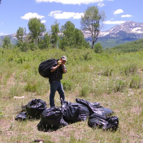 photo of a pile of black bags loaded with weeds