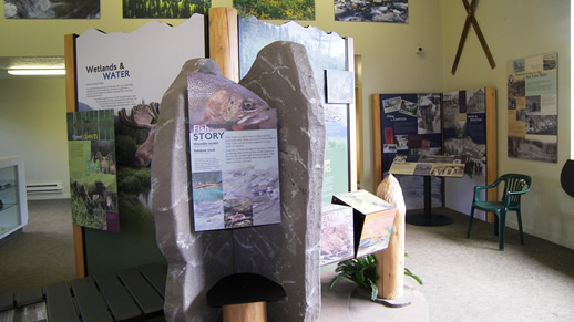 Photo of the fish display at the visitor center.