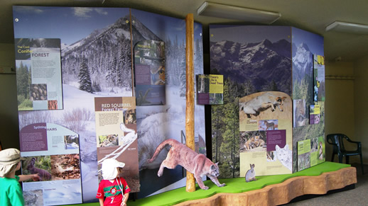 Photo of a display that had information on a number of different mammals at the visitor center.