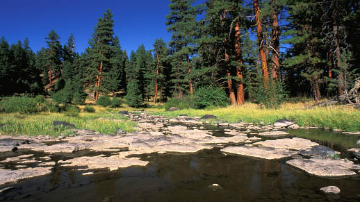 The headwaters of the Crooked River gather atop the Ochoco mountains