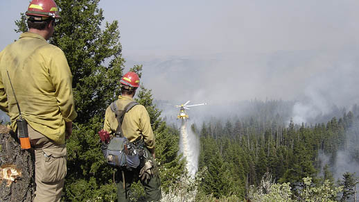 Firefighters use a variety of tools to manage a fire-evolved landscape