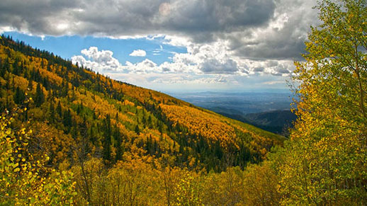 Autumn in Santa Fe National Forest's High Country