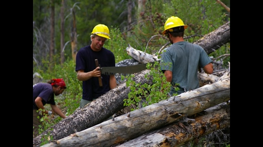 Photo of 2 people using a cross cut saw to cut a log in the Sawtooth NRA
