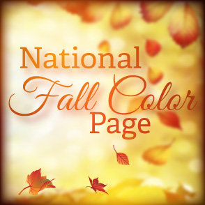 National Fall Colors Button