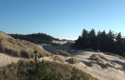 view of dunes from the Oregon Dunes Day Use viewing platform