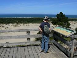 person on viewing platform reading interpretive panel looking out over the dunes towards the Pacific Ocean
