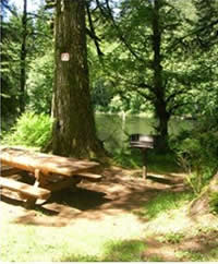 photo showing clearing around the picnic table and  stove at the campground