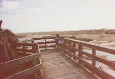 viewing platform running out over dunes with wheelchair at end