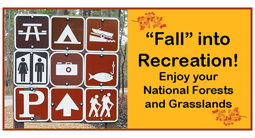 Fall into Recreation