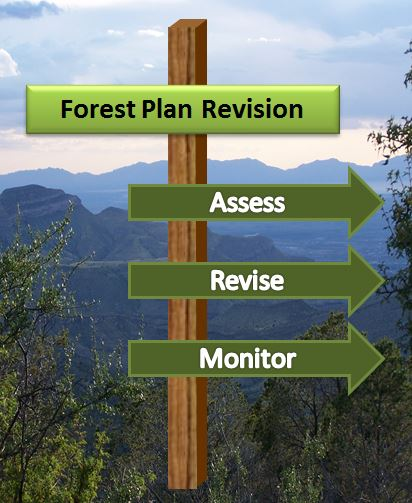 Forest Plan Revision Logo
