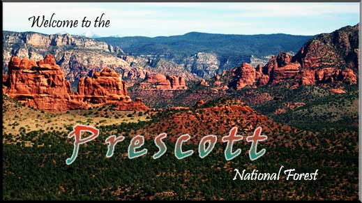 Welcome to the Prescott National Forest