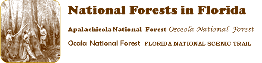 National Forests in Florida, Apalachicola NF, Osceola NF, Ocala NF, Florida National Scenic Trail