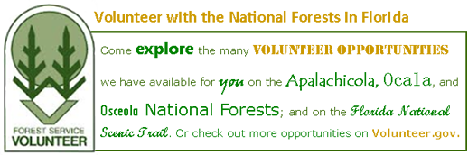 Volunteer with the National Forests in Florida