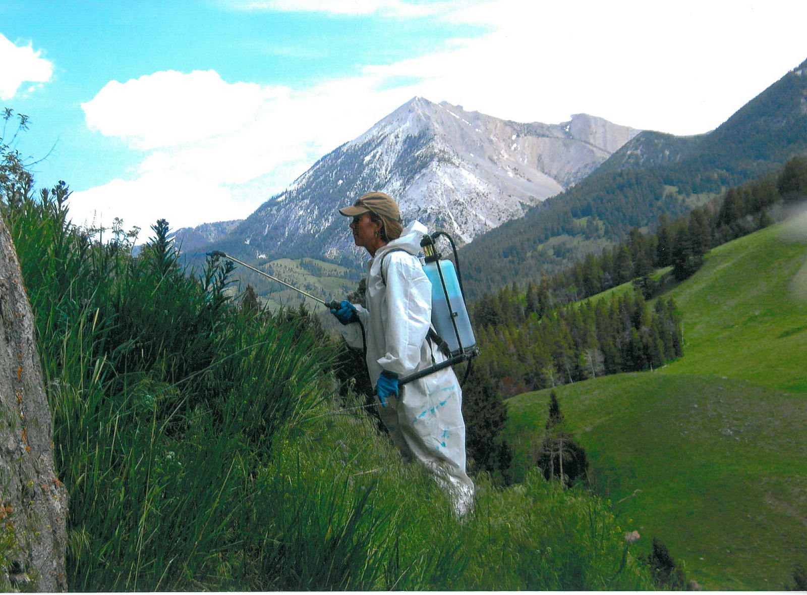 A Seasonal Employee Sprays Weeds on the Rocky Mountain Front