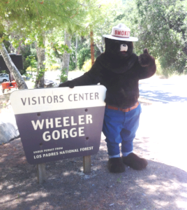 [image] Smokey at Wheeler Gorge Visitor Center