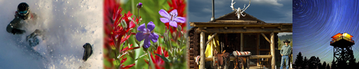 Four Pics on landing page of snowmobiler, cabin, wildflowers and star trails at night