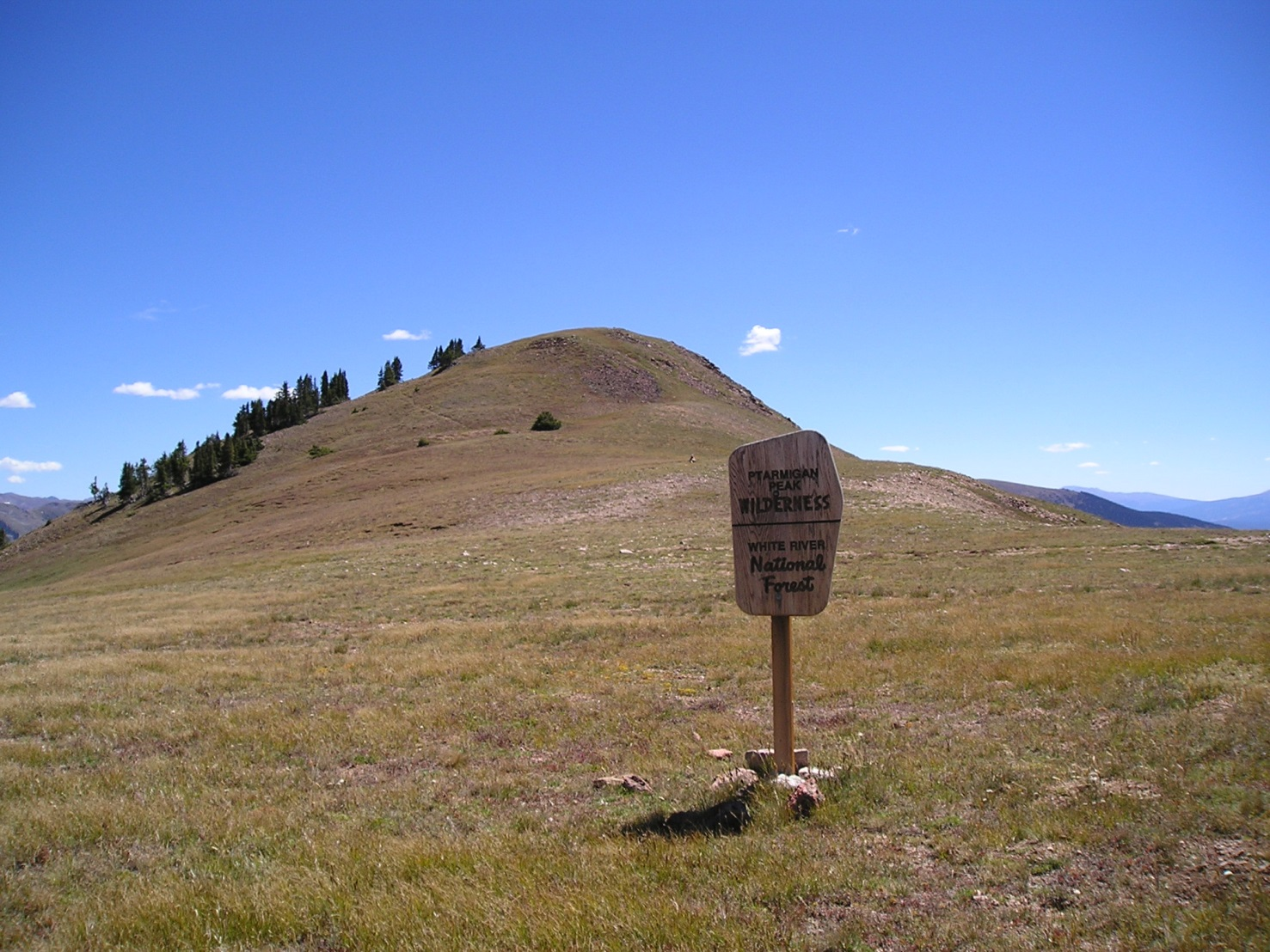Sloped grassy knoll with Wilderness sign in foreground.
