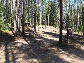 North Fork Poudre Campground Site #9