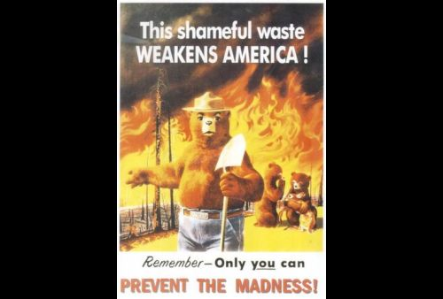 vintage poster of Smokey the Bear fire prevention