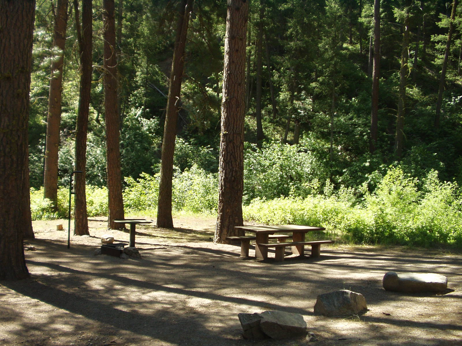 Photo of picnic table in trees