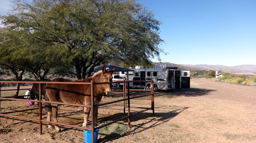 Horse corrals at Fraizer Campground