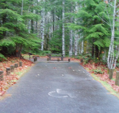 Accessible campsite at Brown Creek Campground.