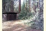 Photo of blowdown at Cave Campground