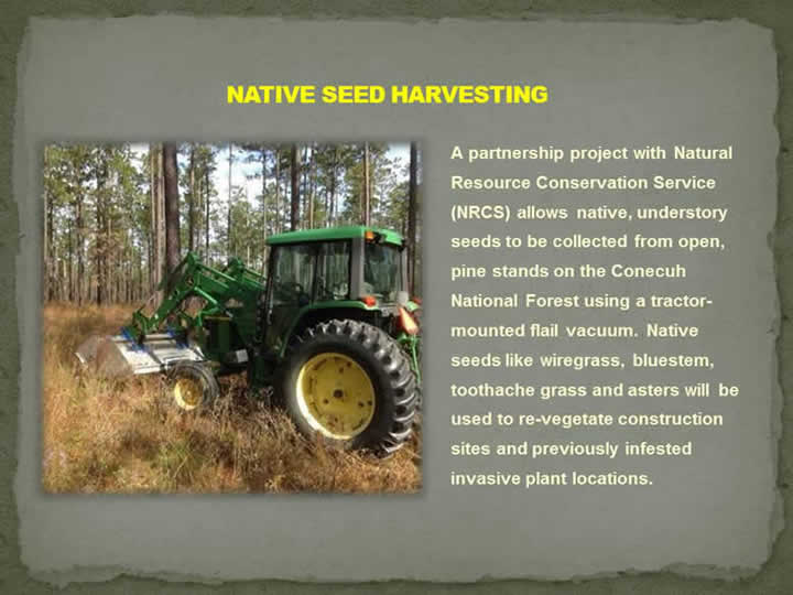 Native Seed Harvesting