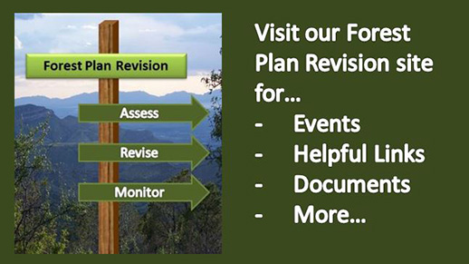 Forest Plan Revision