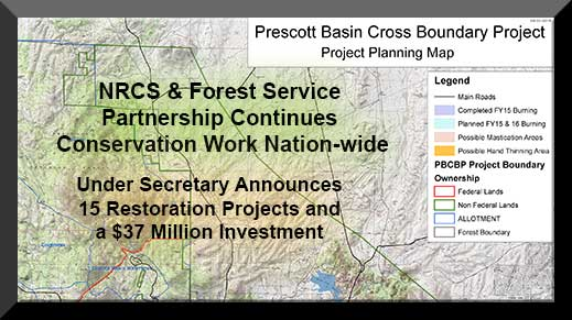 Partnerships work to restore forest health and reduce fire danger