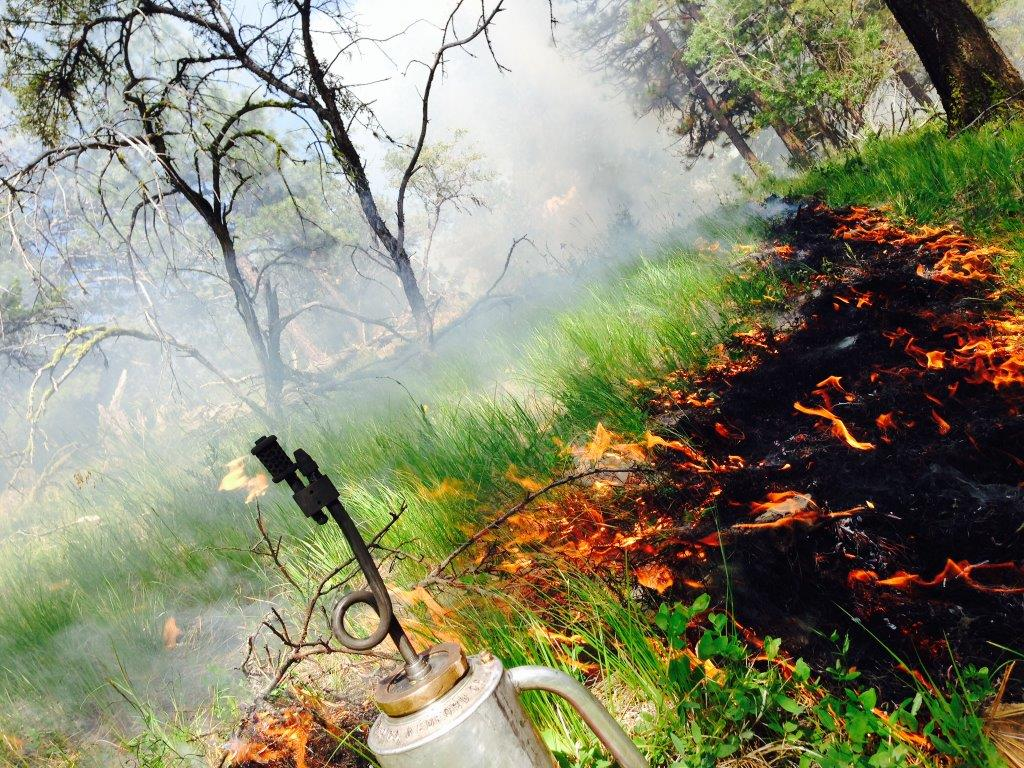 Prescribed fire burn on the MAF by employee Victor Garcia