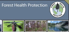 Forest Health Protection icon