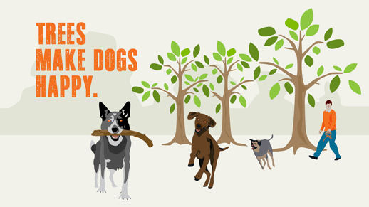 Illustration of 3 dogs running, one with a stick in its mouth, in the background is a human & trees
