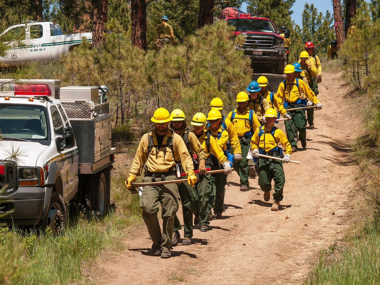 Line of firefighters headed down a road