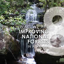 8 Way We Are Improving Forest in National Forests in Alabama