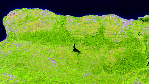 Satellite view of the northern karst region of Puerto Rico captured by Landsat 8