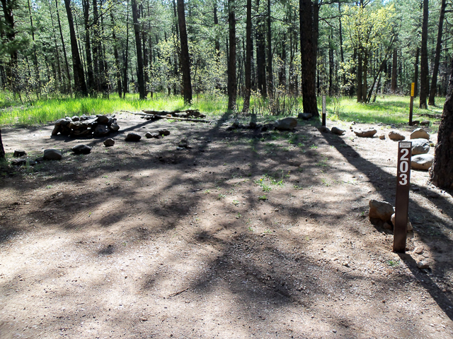 Photo of a typical campsite in the FR 237 Pumphouse Wash dispersed camping area