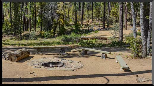 Large fire pit in Lower Wolf Creek Campground