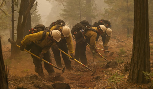 Photo of firefighters digging a fire break'.