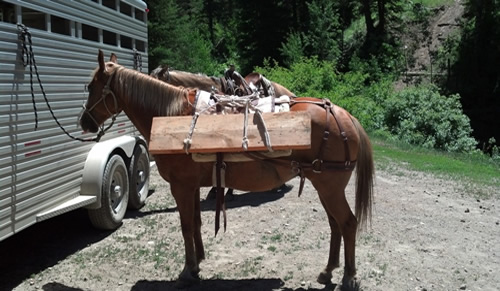 Photo of a horse tied up to a trailer with lumber strapped to his pack saddle