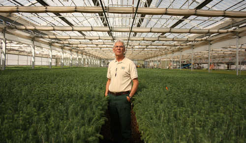 Photo of a man standing in the middle of a nursery with seedlings around him.