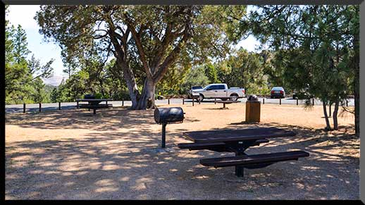 Large junipers and ponderosa pines shade the central picnic area